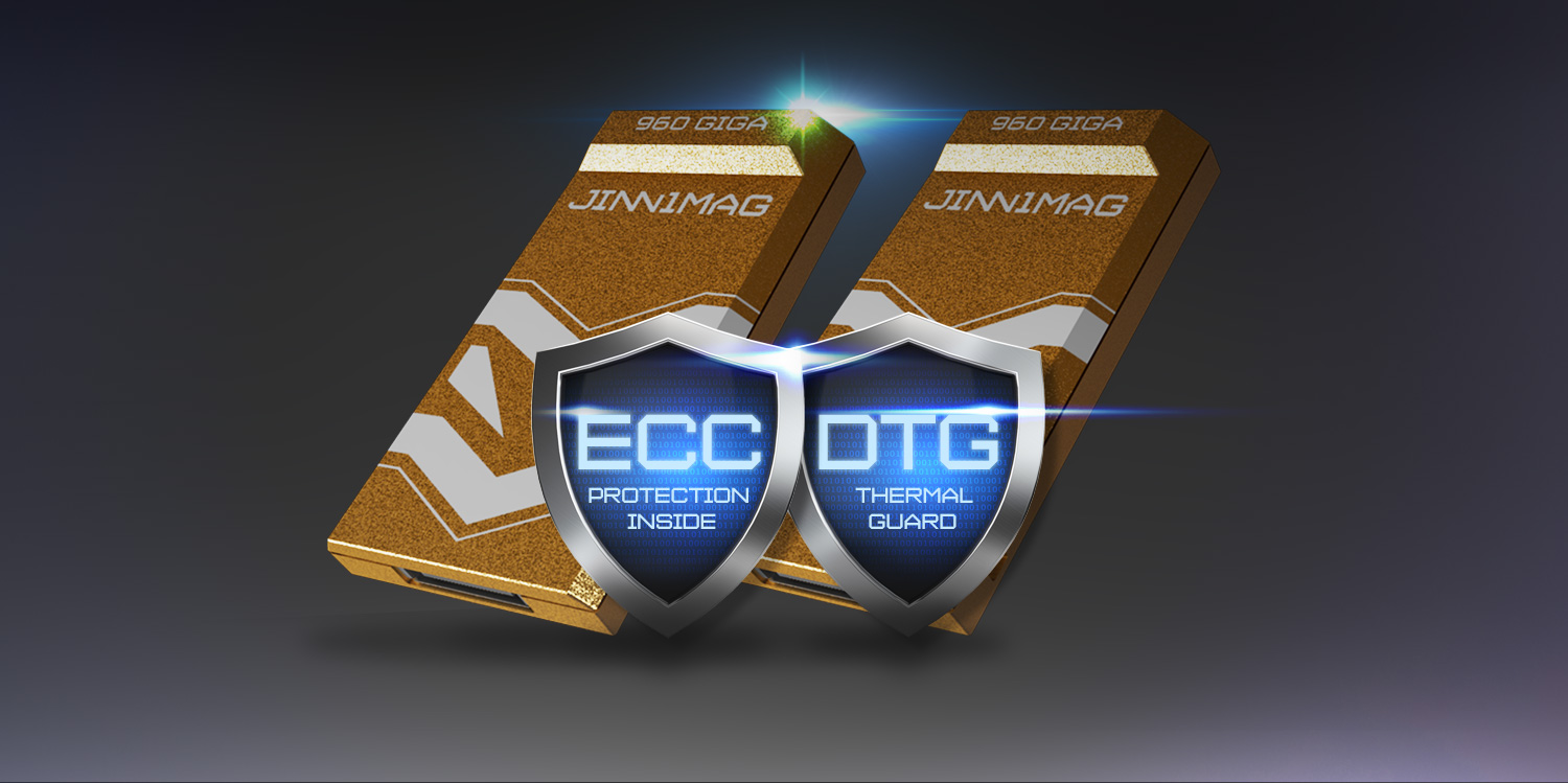 JinniMag 1TB ECC and DTG Protection